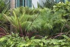Belgrave South Beach and coastal landscaping 3