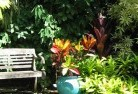 Belgrave South Tropical landscaping 11