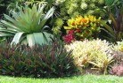Belgrave South Tropical landscaping 9